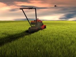 Lawnmower Maintenance Baltimore Maryland